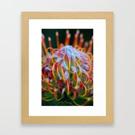 Hue Framed Art Print