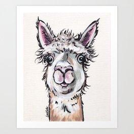 Maggie the Alpaca, Alpaca Art Art Print