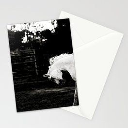 After the Ride Stationery Cards