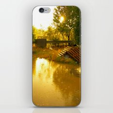 Let it rain... iPhone & iPod Skin