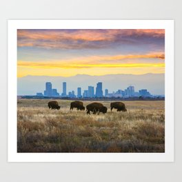 City Buffalo Art Print