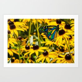 Surreal Monarch on Flowers Art Print