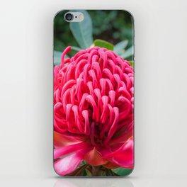 Wild Beauty Watarah iPhone Skin