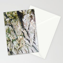Feeling Photography Stationery Cards