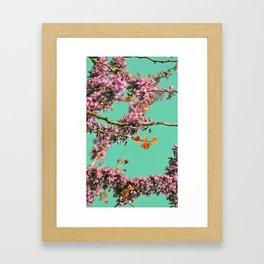Spring Color of Revolution Framed Art Print