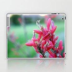 Hidden Gems Laptop & iPad Skin