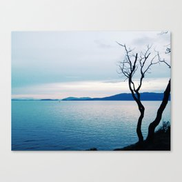 Great Mystery II Canvas Print