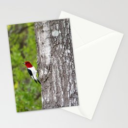 Red-headed Woodpecker Stationery Cards