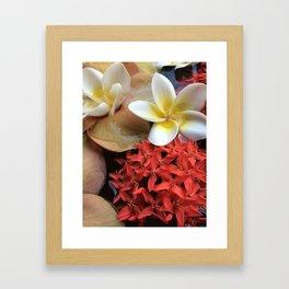 Frangipani & Ixora Framed Art Print