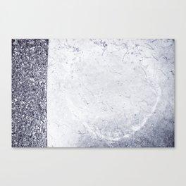 Fecundación / Conception Canvas Print