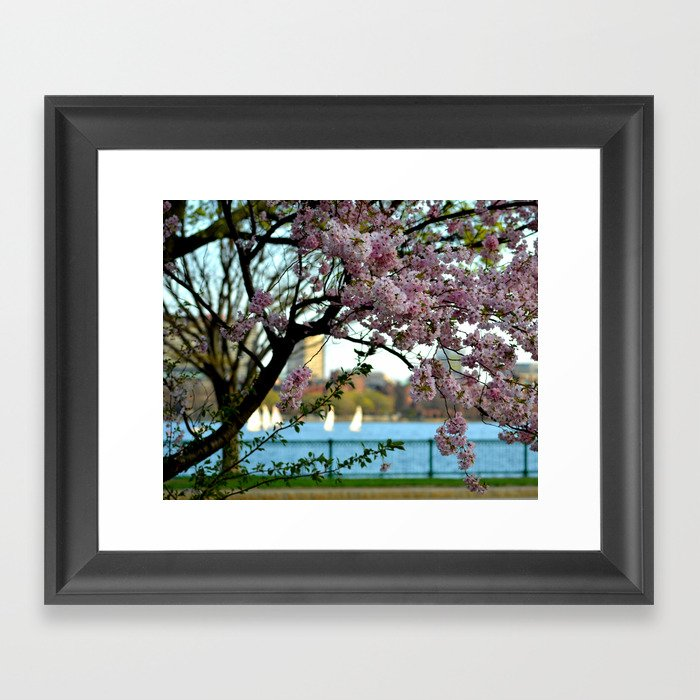 A Spring Day On The Charles River Boston MA Framed Art Print