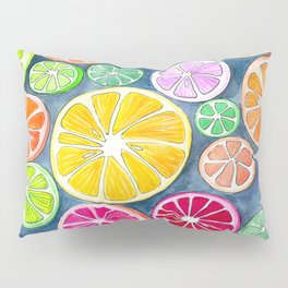 Citrus Painting Pillow Sham