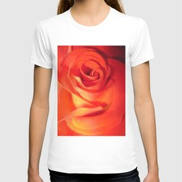Sunkissed Orange Rose 10 T-shirt