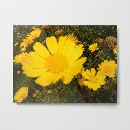 #felicità #smigol #flower #flowerstyles_gf #flowerpower #fleur #vscoflower #flowerstalki Metal Print