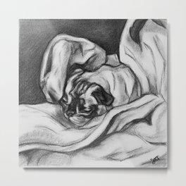Snug as a Pug Metal Print