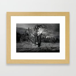 Frozen in Time Framed Art Print