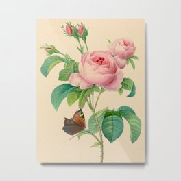 Selection of the most beautiful flowers Pink Rose - Pierre-Joseph Redouté - 1827 Metal Print
