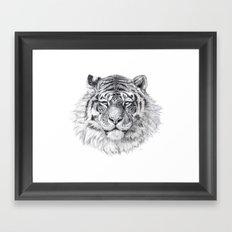 Tiger G003 Framed Art Print
