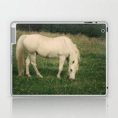 zaldi zurixe Laptop & iPad Skin