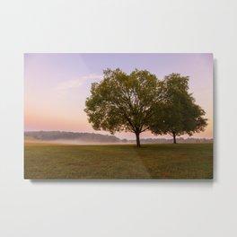 Piedmont Sunrise Metal Print
