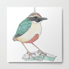 Fairy Pitta Metal Print