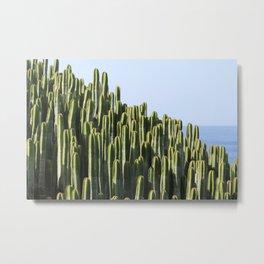 Cactus Plant Spur Metal Print