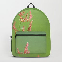 Reddish flower on a green Backpack