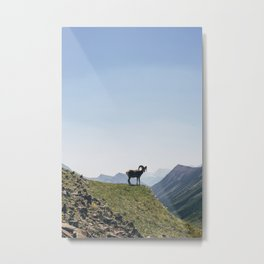 The Goat Metal Print