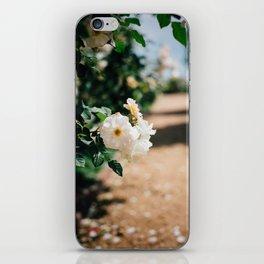 Down the Garden Path, No. 2 iPhone Skin