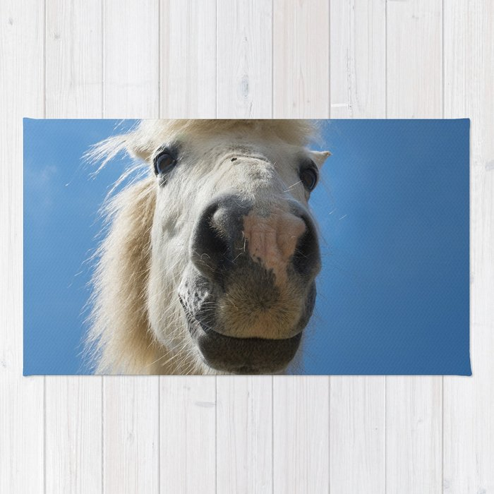 Funny Horse Rug