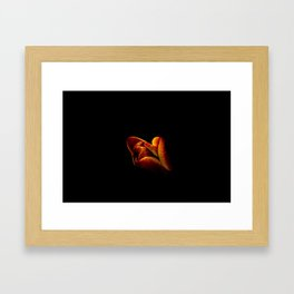 Flower photography by Mirciov Dan Framed Art Print