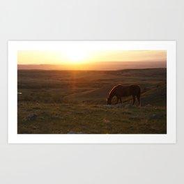 Ranch Sunset Art Print
