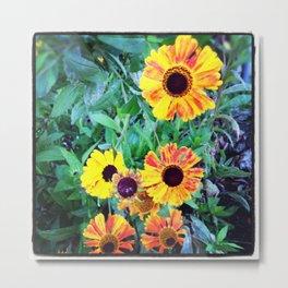Alley Flowers  Metal Print