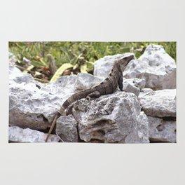 Iguana in the Ruins of Tulum #1 Rug