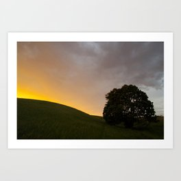 sunset hill and tree Art Print