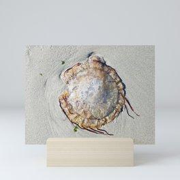 Sea nettle on the sand Mini Art Print
