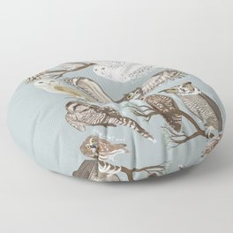 Owls Illustrated Chart Floor Pillow