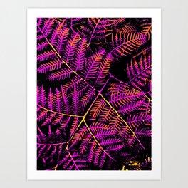 Purple, Orange & Yellow Bracken Art Print