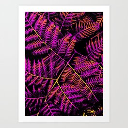 Purple, Orange & Yellow Bracken Art Print