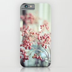 Rose Hips in a Window Still Life Autumn Botanical iPhone 6s Slim Case
