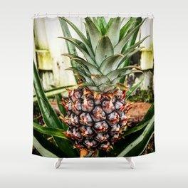 Mine-apple Pineapple Shower Curtain