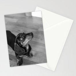 Weenie Dog Stationery Cards