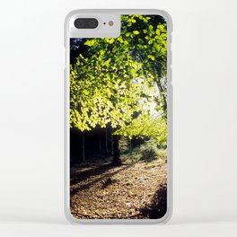 The Woods in Spring Clear iPhone Case