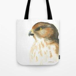 juvenile red-tailed hawk Tote Bag