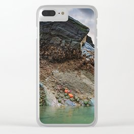 The Sun Sets Behind a Cape Blanco Tide Pool Full of Starfish and Anemones Clear iPhone Case