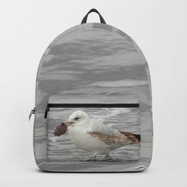 Do You Have Change For A Dollar Backpack