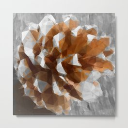 Conical Metal Print