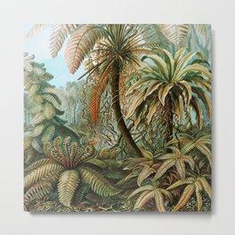 Ernst Haeckel- Vintage Tropical Rainforest Metal Print