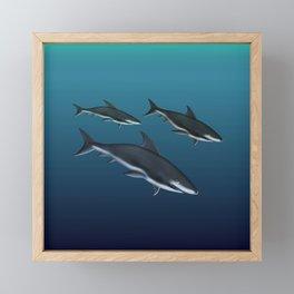 Three Sharks Dive Deep Framed Mini Art Print