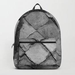 Peau d'Ardoise - Slate Skin Backpack